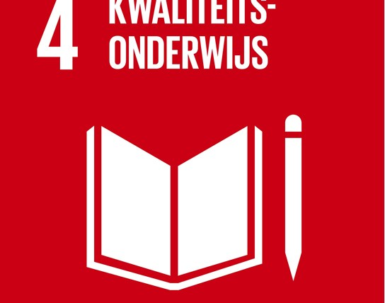 grote weergave SDG's - icoon 4