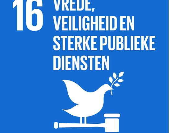 grote weergave SDG's - icoon 16