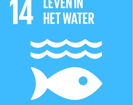 grote weergave SDG's - icoon 14