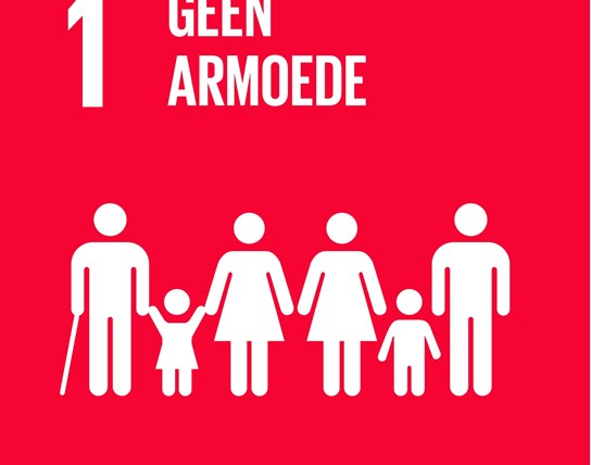 grote weergave SDG's - icoon 1