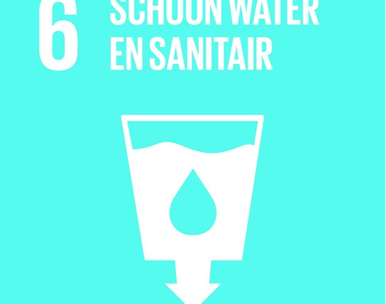 grote weergave SDG's - icoon 6