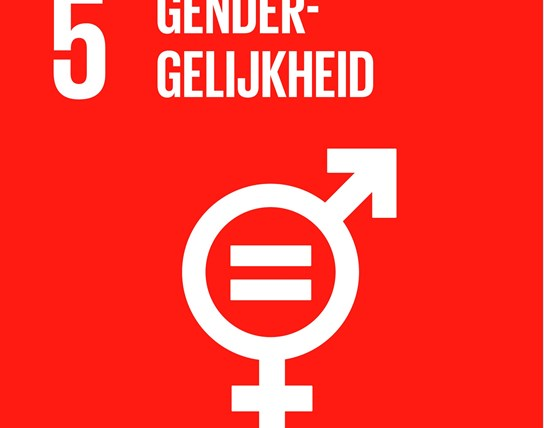grote weergave SDG's - icoon 5