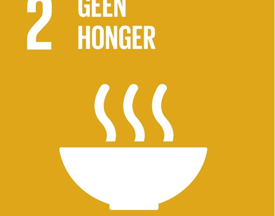 grote weergave SDG's - icoon 2