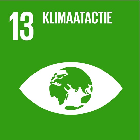 grote weergave SDG's - icoon 13