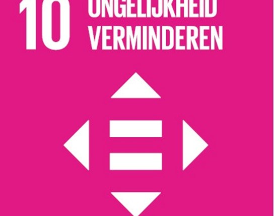 grote weergave SDG's - icoon 10