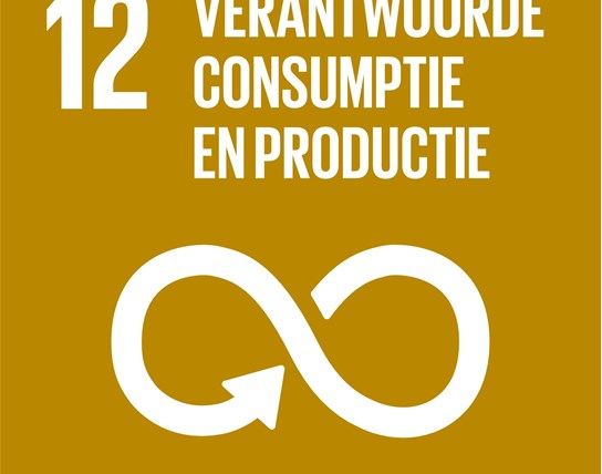 grote weergave SDG's - icoon 12
