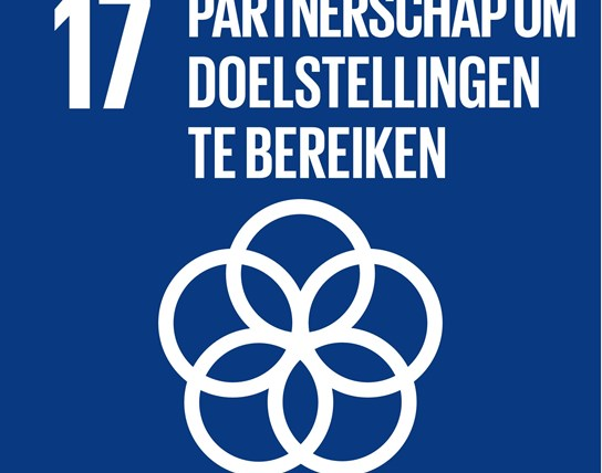 grote weergave SDG's - icoon 17