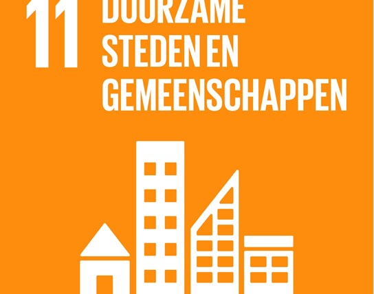 grote weergave SDG's - icoon 11