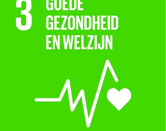 grote weergave SDG's - icoon 3