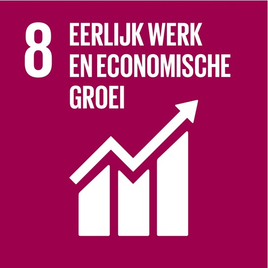 grote weergave SDG's - icoon 8